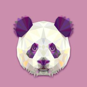 NUCLEAR PANDA