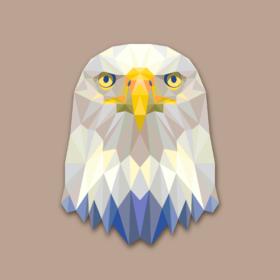 RESOLUTE EAGLE