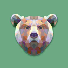 TRUE BEAR